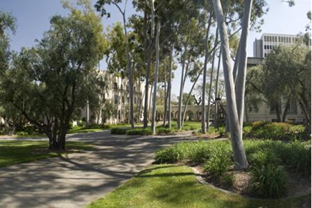 08-pano017-Caltech